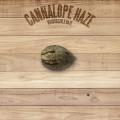 The Plant Organic Seeds 2-2 Cannalope Haze Sativa Feminizada Semilla