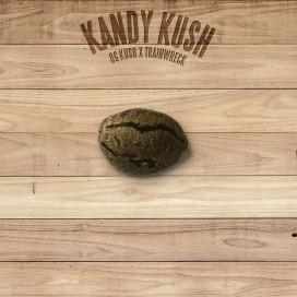 The Plant Organic Seeds 3-2 Kandy Kush Indica Feminizada Semilla
