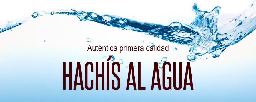 Autentica primera calidad en extracciones al agua